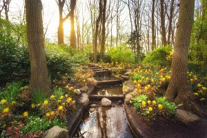 Amazing blooming spring park with water cascade