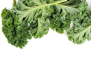 Green leaves of kale.