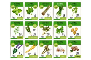 Vector price cards set for spices and herbs