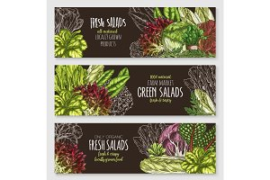 Salads and leafy vegetables vector banners set