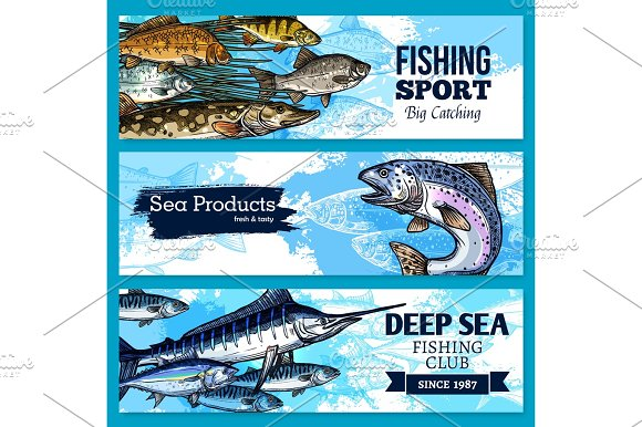 Vector Banners Of Fishing Club Or Sea Fish Product