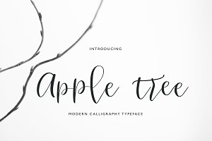 Apple Tree Calligraphy Typeface