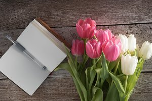 Tulips and Notebook Photo