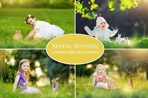 Spring Bunnies photo overlays