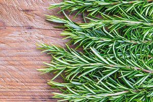 Fresh rosemary herbs.