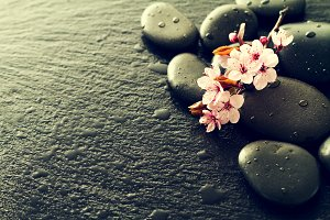 Beautiful pink flowers on spa stones
