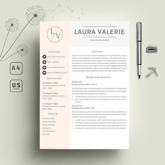 2 Page Resume CV