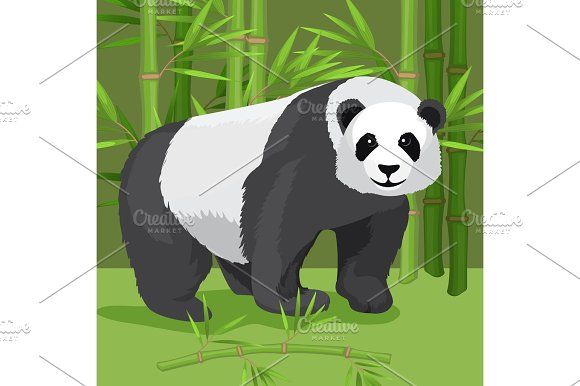 Black And White Heavy Panda Stands On Paws Bamboo Background