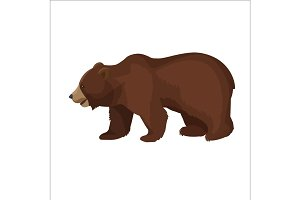 Large brown bear side view close-up graphic icon on white