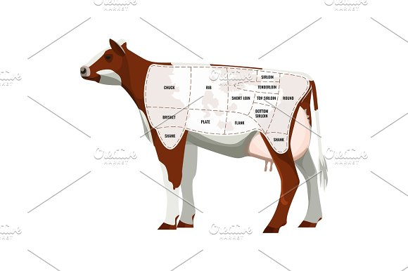 Caw Steak Parts Beef Cattle Parted Into Departments Icon Isolated