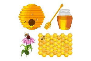 Set of beekeeping elements vector beehive, honeycomb, flower, fresh honey