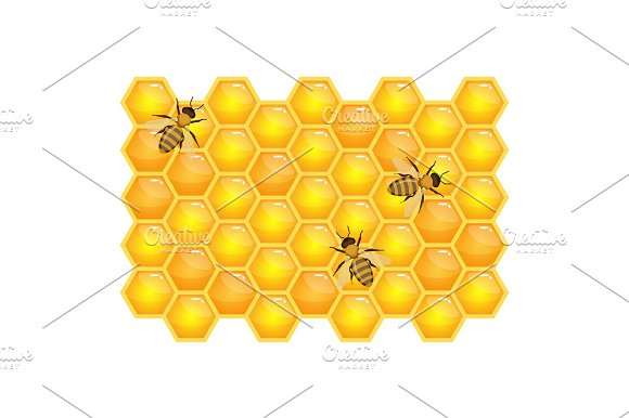 Bee On Honeycombs Isolated On White Background Organic Honey Vector
