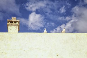Two seagulls on a roof