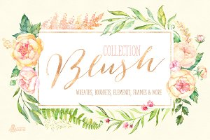 Blush. Floral Collection