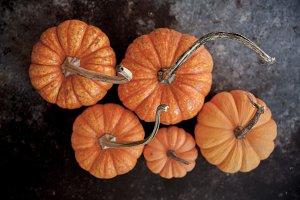 Five little pumpkins- Autumn