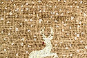 Christmas Rudolph on burlap