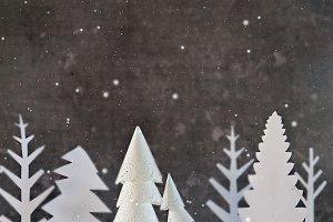 Winter Dark forest silhouette trees