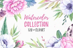 60% SALE. Watercolor collection