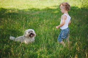 little boy with shaggy dog in park