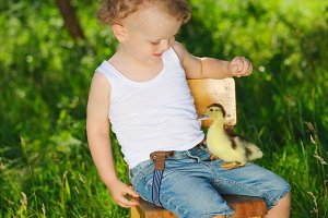 boy with little yellow duckling in summer village