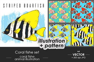 Coral fish illustration, patterns