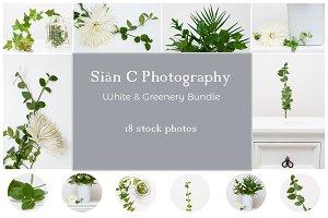 White & Greenery |Stock Photo Bundle