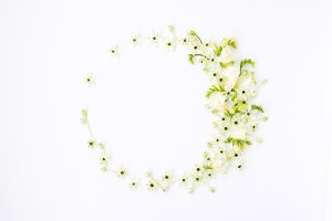 Spring wreath of white flowers