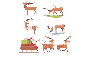 Christmas reindeer holiday mammal deer xmas celebration cute decoration winter art new year wildlife animal and santa man character vector illustration.