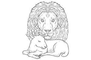 Lion Watching Over Sleeping Lamb