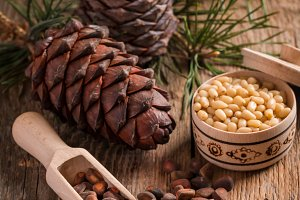 Cedar nuts and branch with cone
