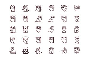 Owl Vector Collection