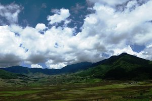 Landscape of Phobjikha valley