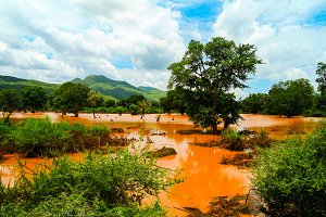 Landscape of red swamp Weito river Ethiopia