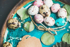 Colorfully painted quail eggs