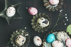 Colorful quail eggs in molds