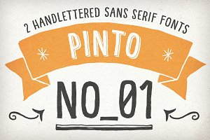 Hand Drawn Pinto NO_01 for Packaging