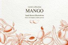 Мango Vector Collection
