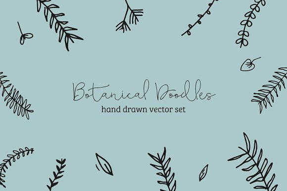 Hand Drawn Botanical Doodles
