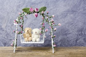 Couple teddy bear on swing