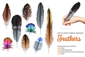 Realistic Feathers Set