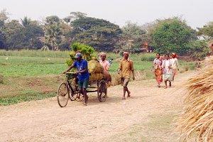 India Village Life