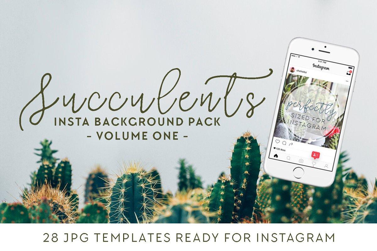 Succulents Insta Pack [volume one]