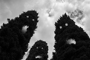 Evil trees