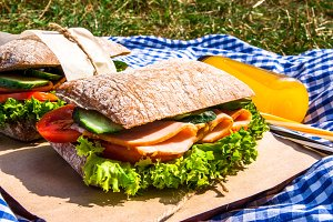 Picnic with sandwiches