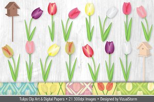 Tulip Illustrations and Patterns
