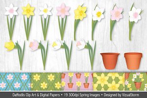 Daffodil Illustrations and Patterns