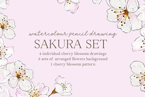 Watercolour Sakura Drawing Set