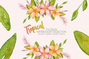 Tropical Floral Watercolor