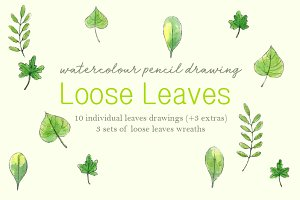 Loose Leaves Drawings Set