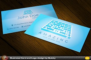 Amazing Business Card and Logo